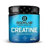 Bodylab24 Creatine Powder 500g | reines Creatin Monohydrat Pulver | Hochdosiertes Kreatin...